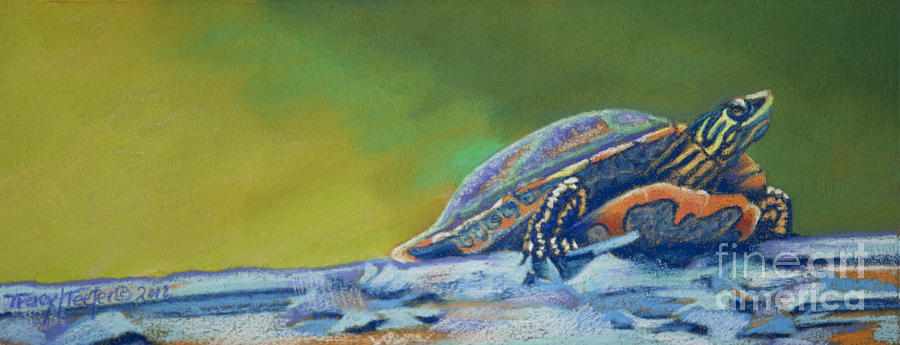 Turtle Pastel - Franks Turtle by Tracy L Teeter