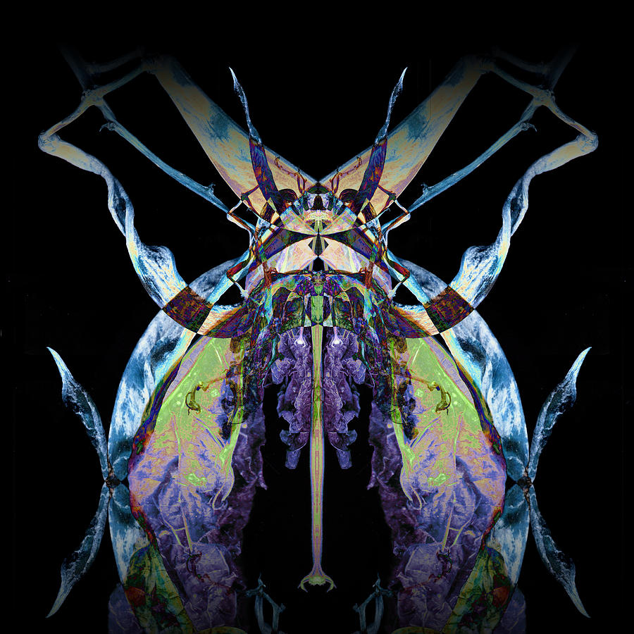 Psychedelic Photograph - Freaky Bug Plant by David Kleinsasser