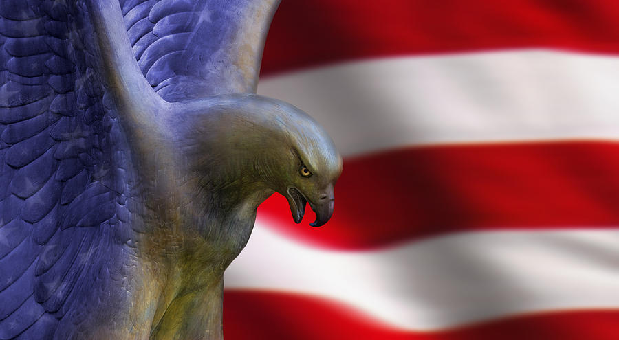 Eagle Photograph - Freedom Flyer by Anthony Citro