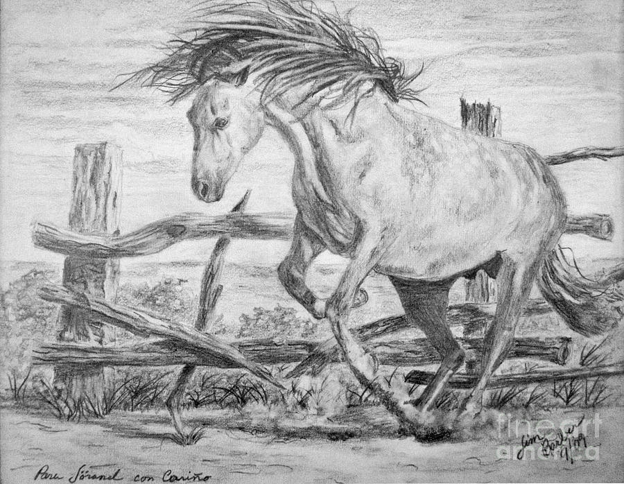 Mustang Painting - Freedom by Jim Barber Hove