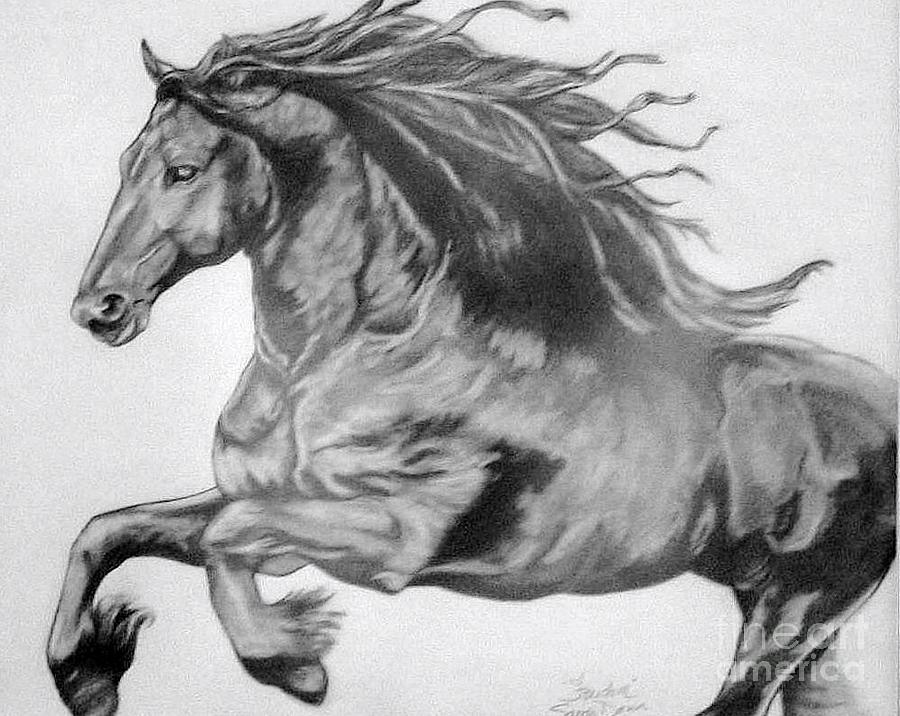 Pencil Drawing Drawing - Freedom by Sandi Dawn McWilliams