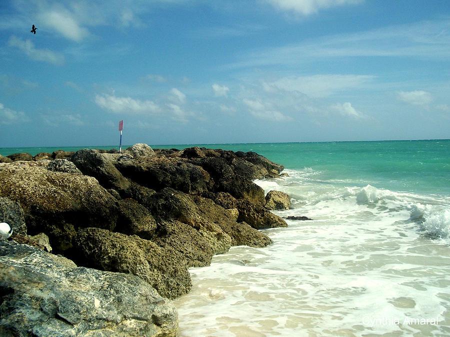 Caribbean Photograph - Freeport Coast by Cynthia Amaral
