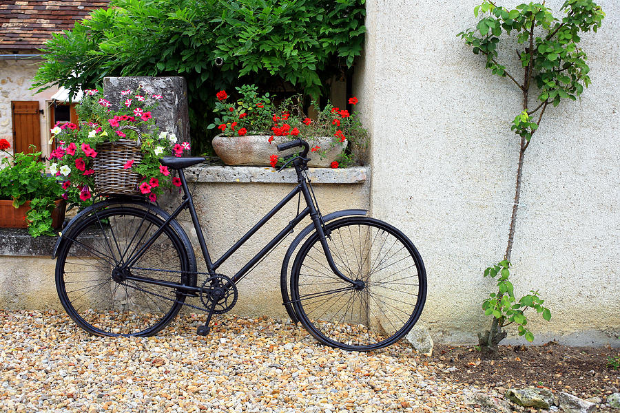 France Photograph - French Bike by Pauline Cutler