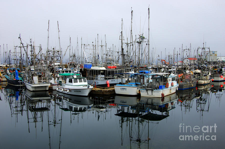Fishing Boats Photograph - French Creek  by Bob Christopher