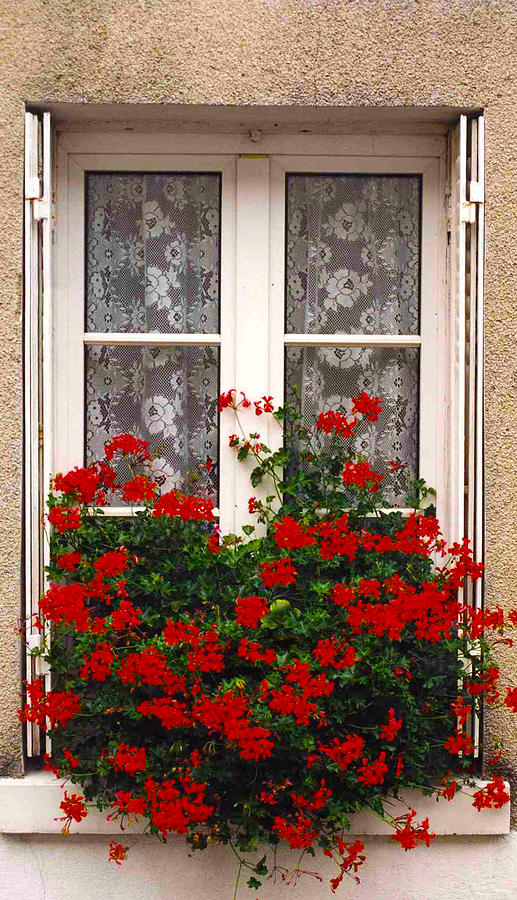 France Photograph - French Window by Denise Laurin