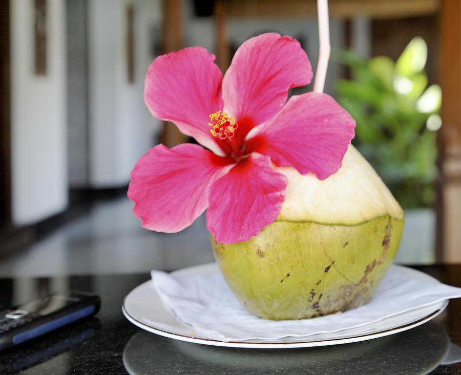 Interesting Photograph - Fresh Coconut Milk Cocktail by Kantilal Patel