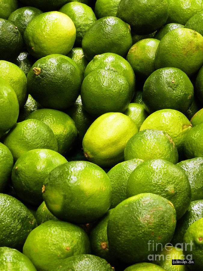 Fresh Limes Photograph - Fresh Limes by Methune Hively