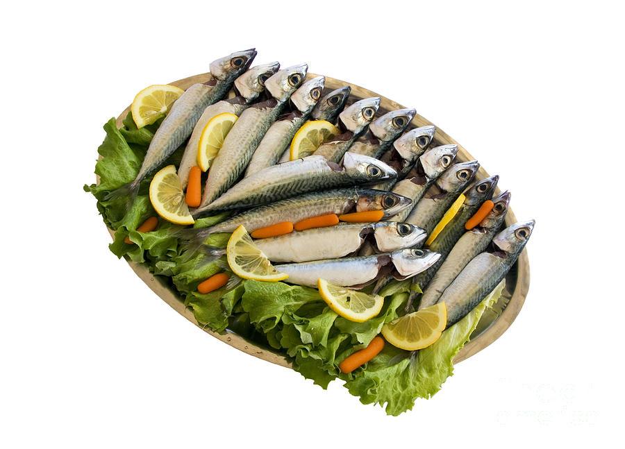 Aegean Pyrography - Fresh Uncoocked Fish by Soultana Koleska