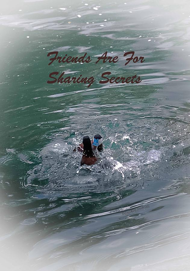 Greeting Card Photograph - Friends Are For Sharing Secrets by DigiArt Diaries by Vicky B Fuller