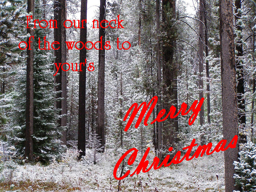 Christmas Cards Photograph - From Our Neck Of The Woods To Yours 3 by DeeLon Merritt