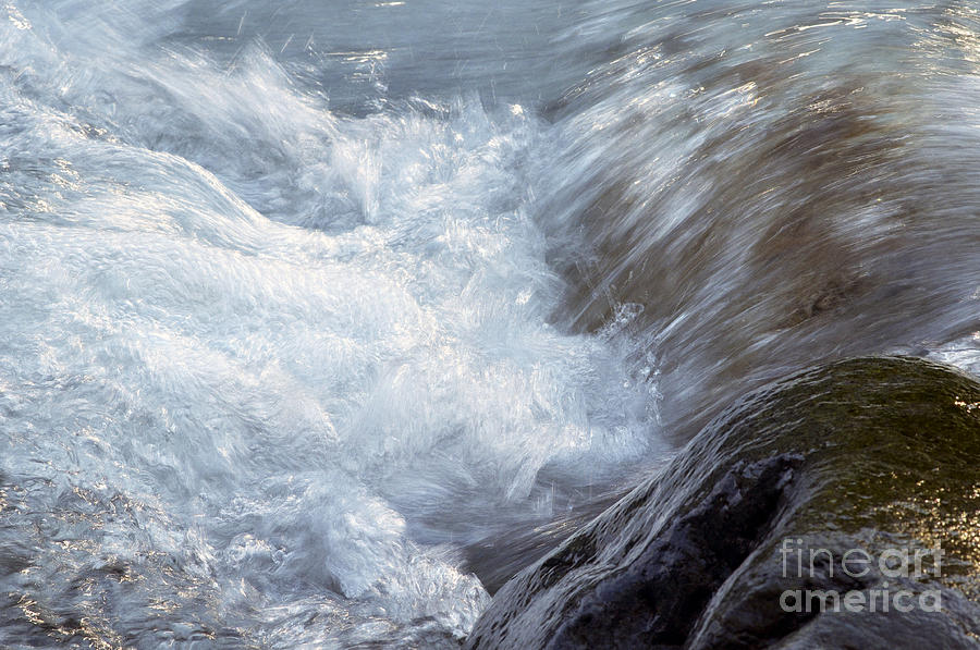 Water Photograph - Froth by Sharon Talson