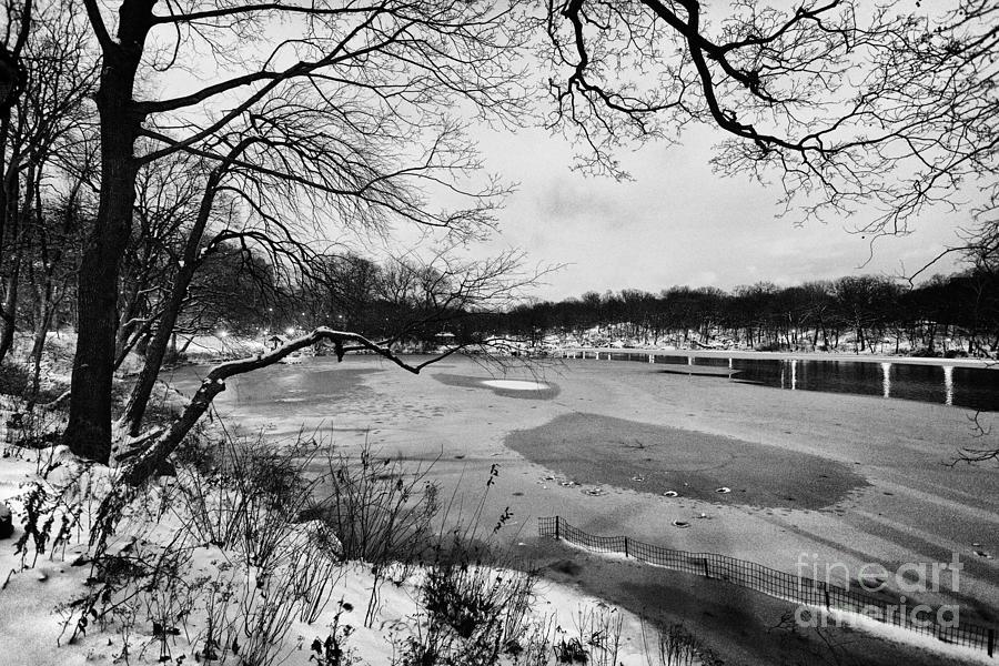 Cold Photograph - Frozen Central Park At Dusk by John Farnan