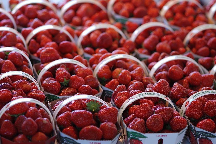 Apples Photograph - Fruit Basket by Francois Cartier