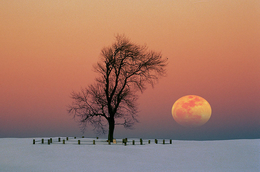 Full Moon Rising Near Graveyard by Larry Landolfi