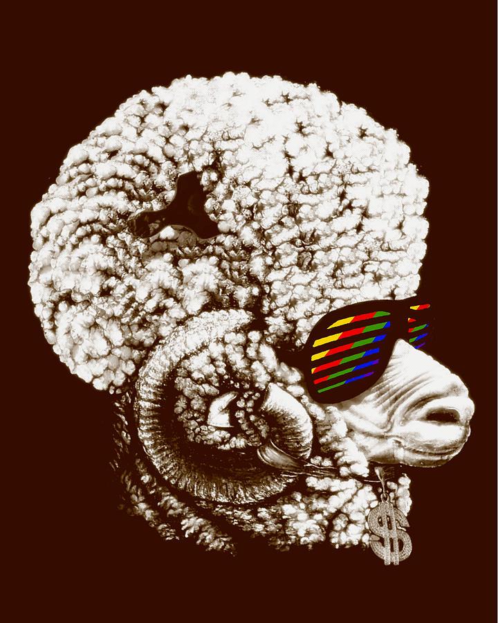 Funky Digital Art - Funky Sheep by Bojan Bundalo