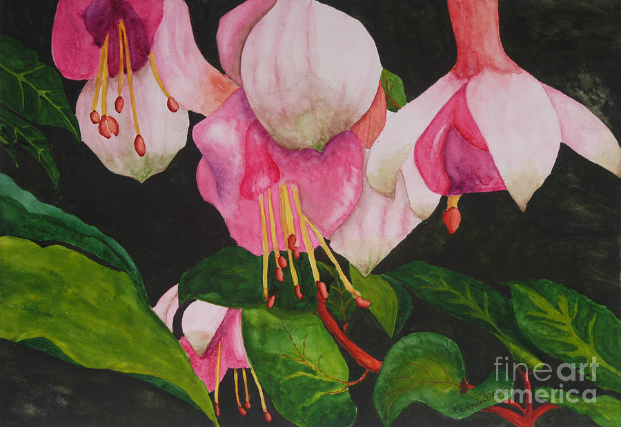 Fuschia Flower Painting - Fuschia Pink Passion by Kimberlee Weisker