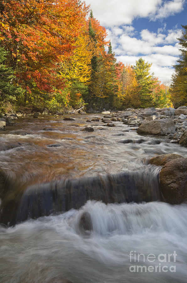 Autumn Photograph - Gale River - White Mountains New Hampshire by Erin Paul Donovan