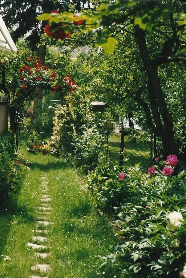 Garden 1 by Michael Puya