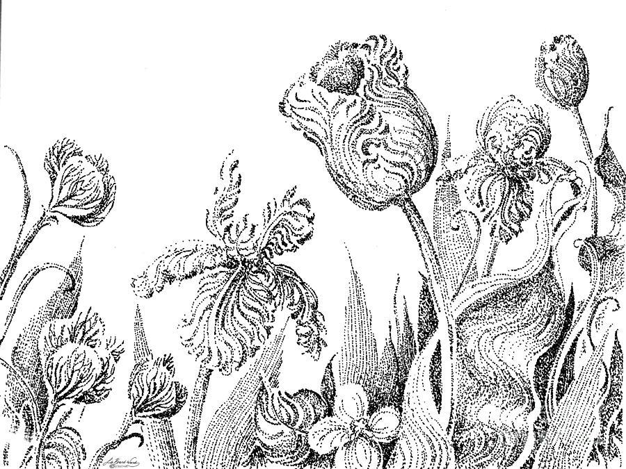 Garden Art Drawing