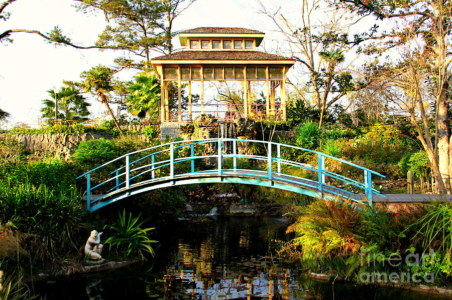 Bridge Photograph - Garden Bridge by Perry Webster