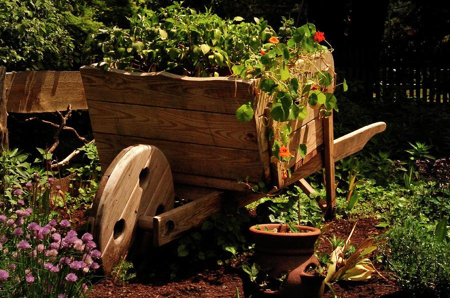 Garden Cart Photograph