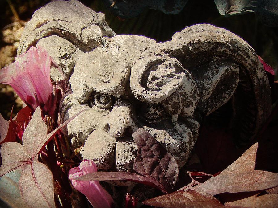 Statue Photograph - Garden Gargoyle by Brenda Conrad