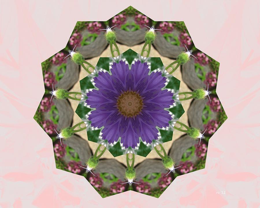 Mandalas Photograph - Garden Mandala... by Rene Crystal