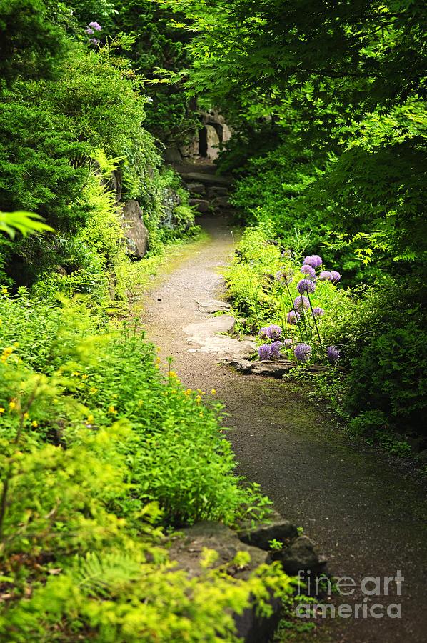 Garden Photograph - Garden Path by Elena Elisseeva