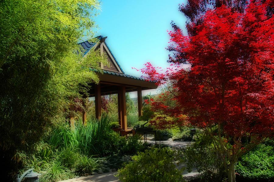 Gardens Photograph - Garden Retreat by Lynn Bauer
