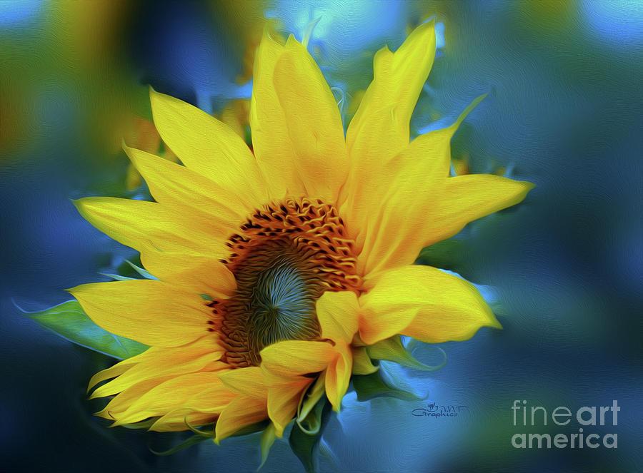 Photo Photograph - Garden Sun by Jutta Maria Pusl
