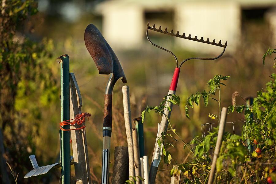 Horizontal Photograph - Gardening Tools by John Greim