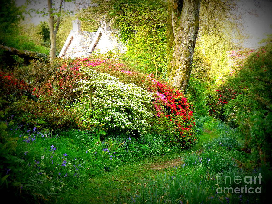 Garden Photograph - Gardens Of The Old Rectory by Lainie Wrightson