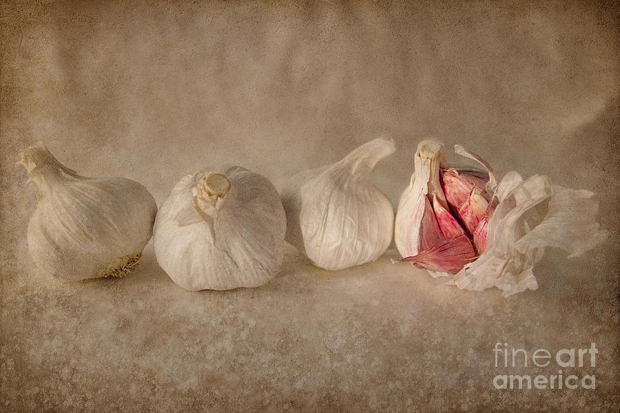 Garlic Photograph - Garlic And Textures by Ann Garrett