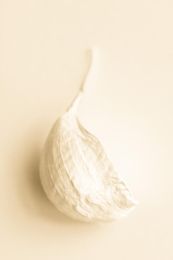 Commercial Photograph - Garlic by Daniel Kulinski