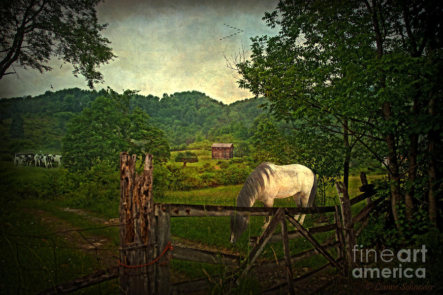 Rural Digital Art - Gate To The Past by Lianne Schneider