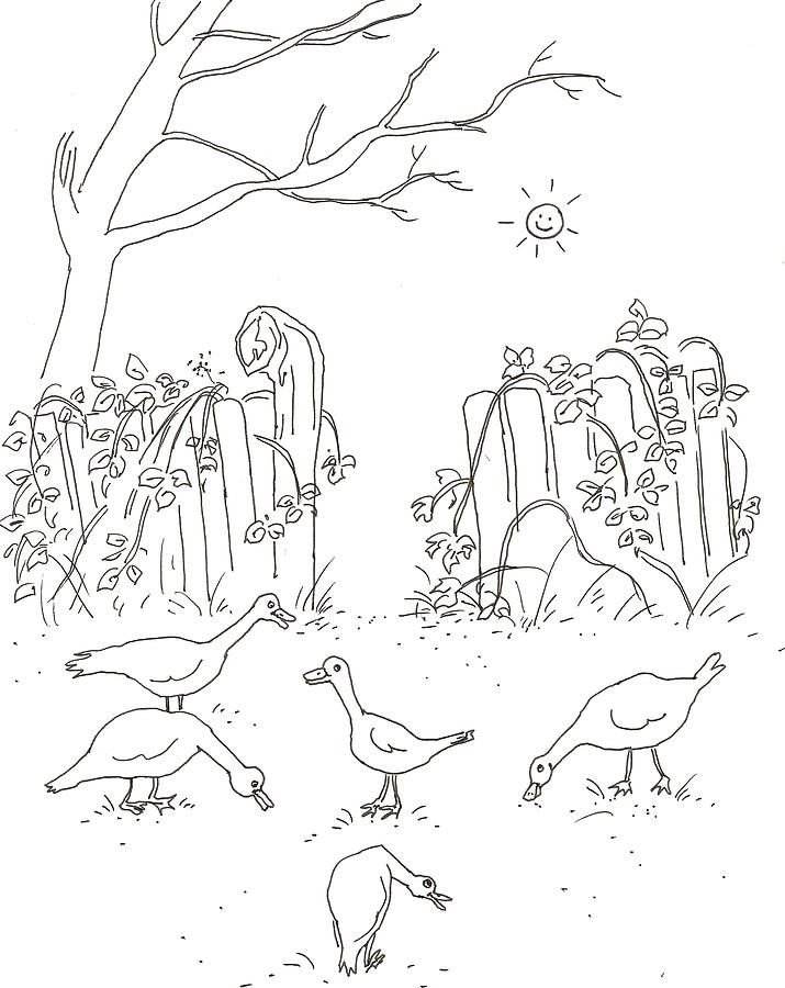 Geese Drawing - Geese In The Garden by Vass Eva Rozsa