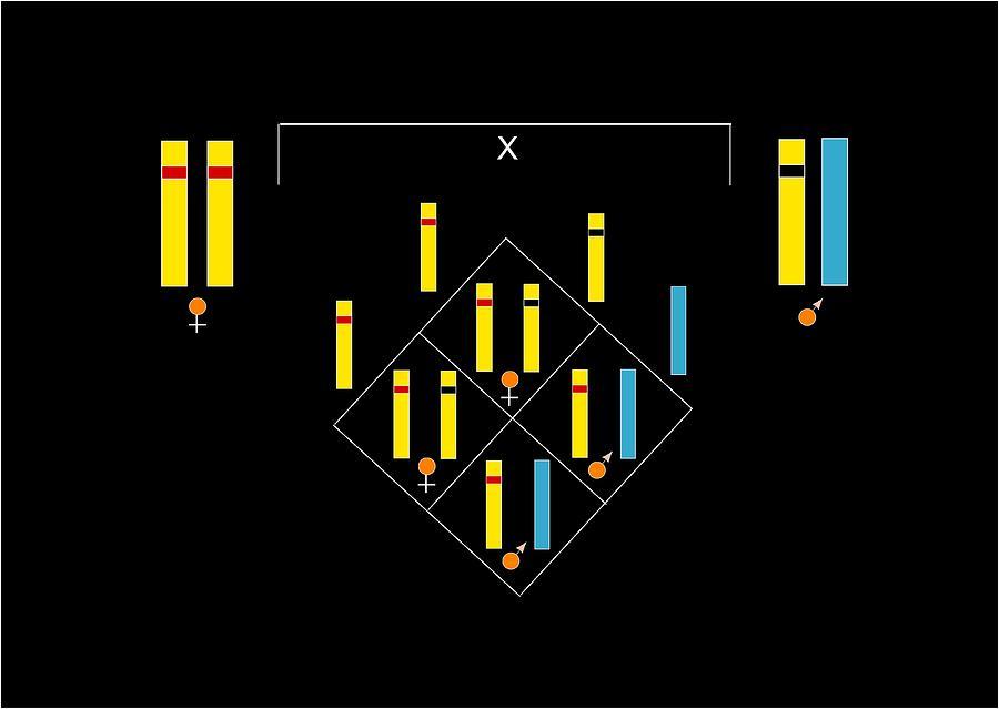 Colour Blindness Photograph - Genetics Of Colour Blindness, Artwork by Francis Leroy, Biocosmos