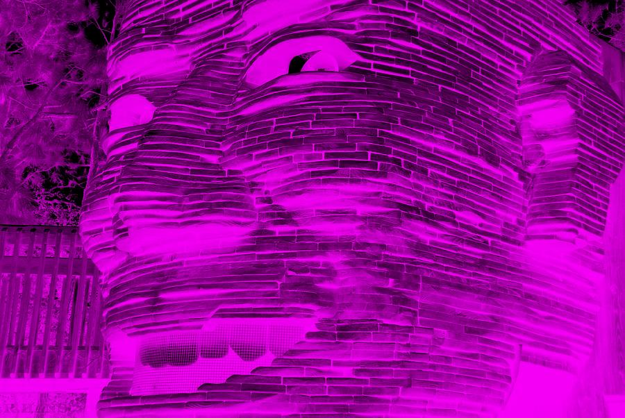 Architecture Photograph - Gentle Giant In Negative Purple by Rob Hans