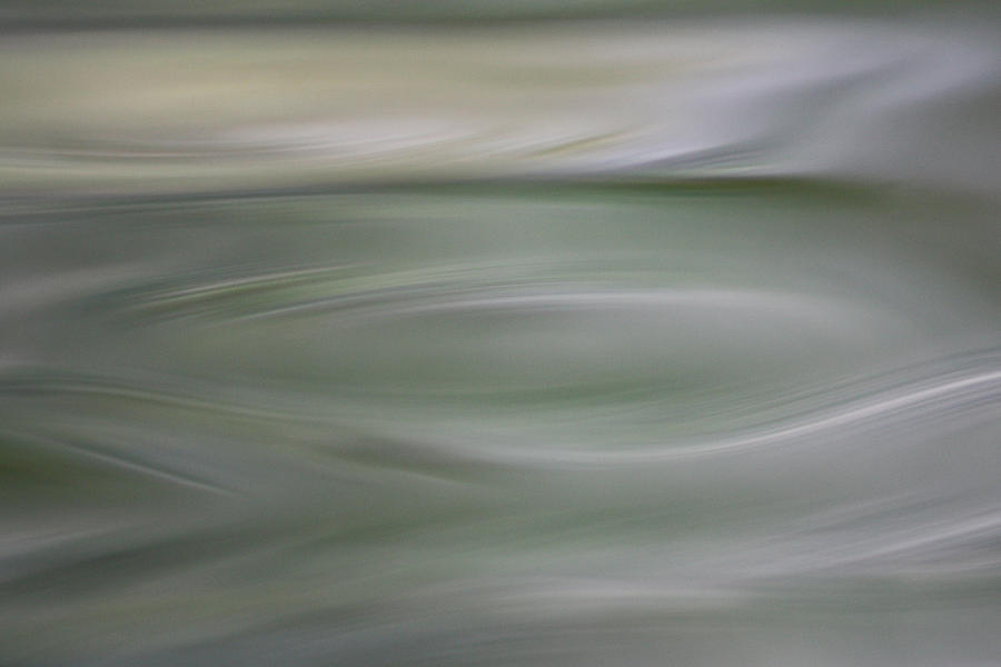 Gentle Green Photograph