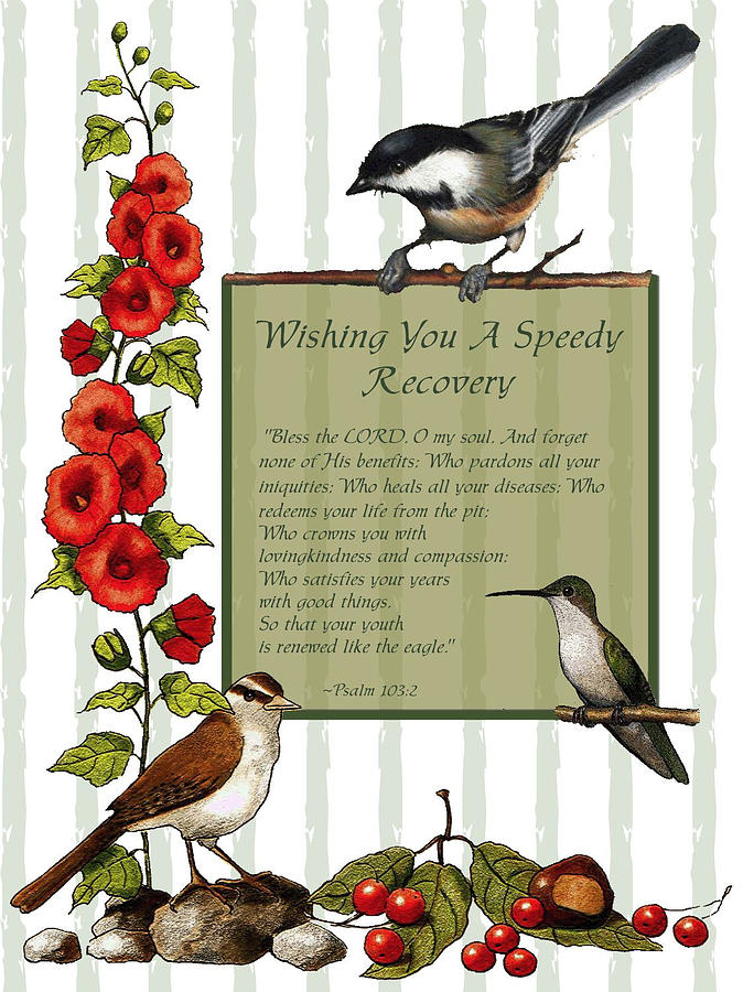 Get well card with birds and flowers drawing by joyce geleynse card drawing get well card with birds and flowers by joyce geleynse ccuart Image collections