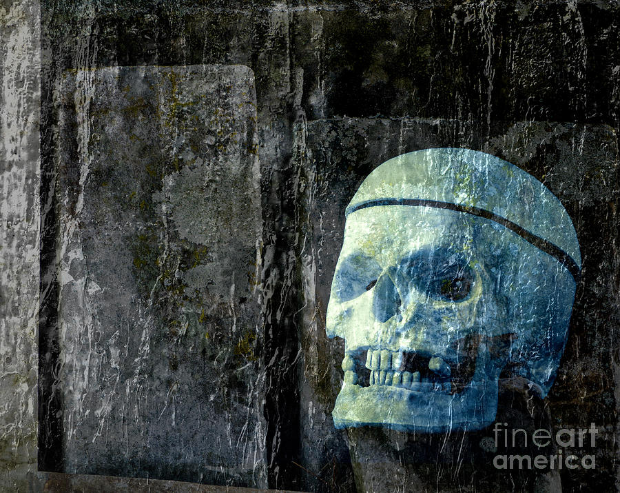 Halloween Photograph - Ghost Skull by Edward Fielding