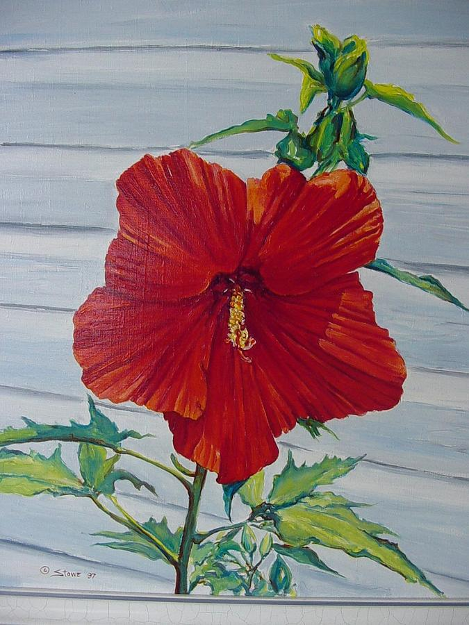 giant red hibiscus painting by bruce stowe. Black Bedroom Furniture Sets. Home Design Ideas