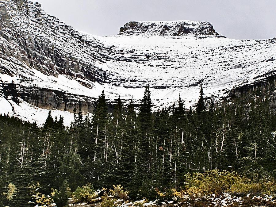 Glacier Photograph - Glacier Park Bowlrock by Susan Kinney