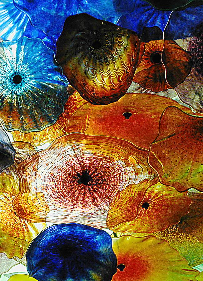 Glass Photograph - Glass Garden by Judee Stalmack