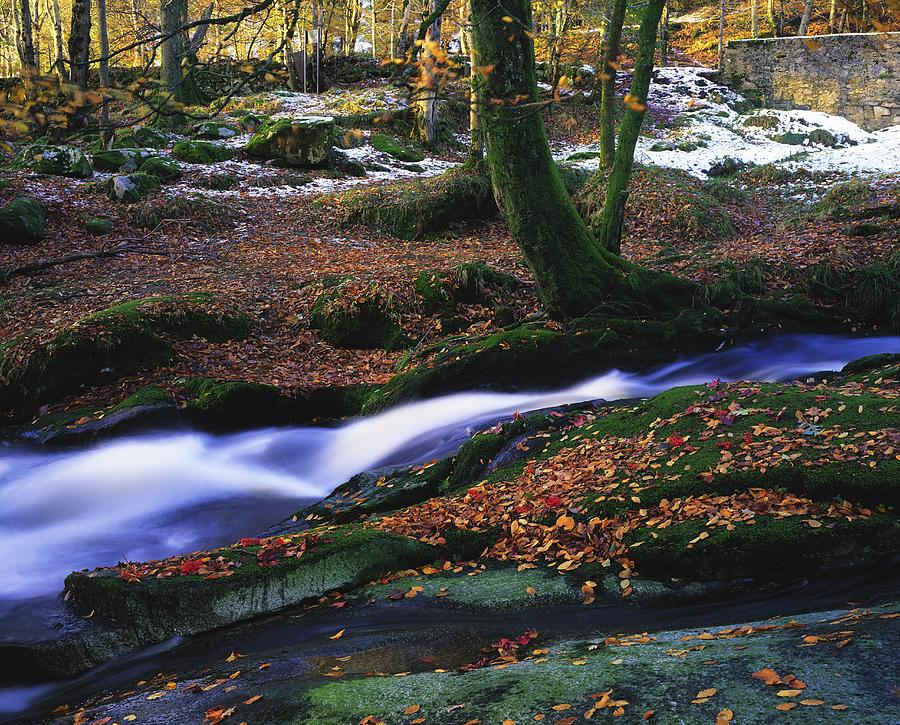 Color Photograph - Glenmacnass Waterfall, Co Wicklow by The Irish Image Collection