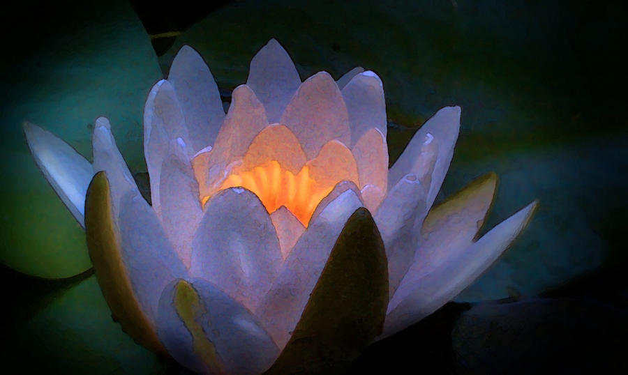 Lily Digital Art - Glow In The Lily by Lauren Goia