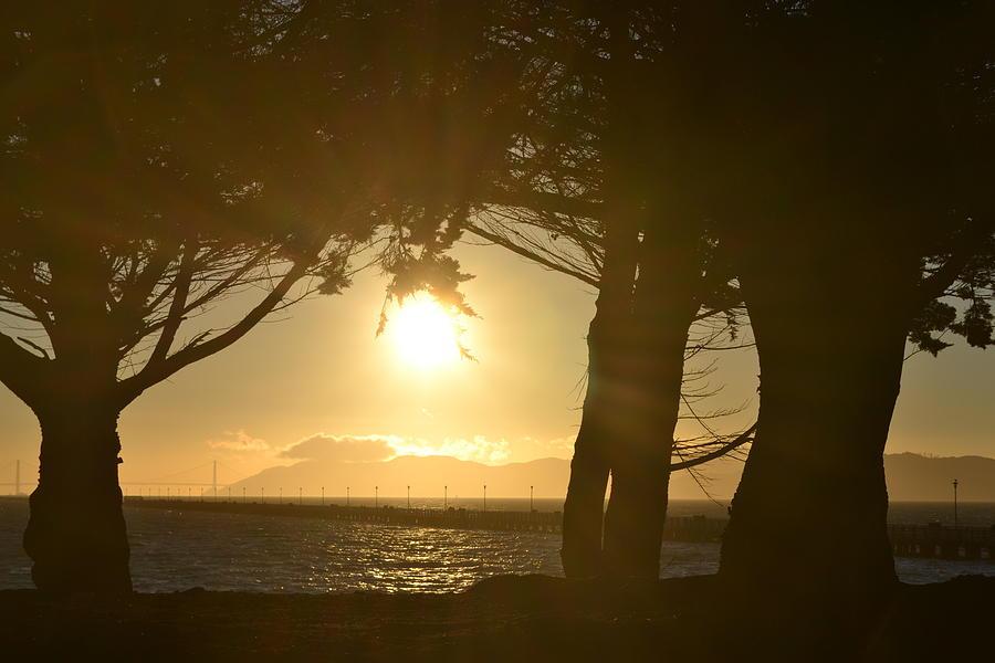 Sun Photograph - Glow by Saifon Anaya
