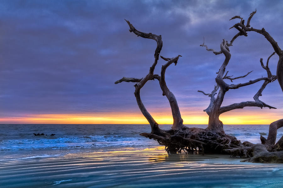 Clouds Photograph - Glowing Sands At Driftwood Beach by Debra and Dave Vanderlaan