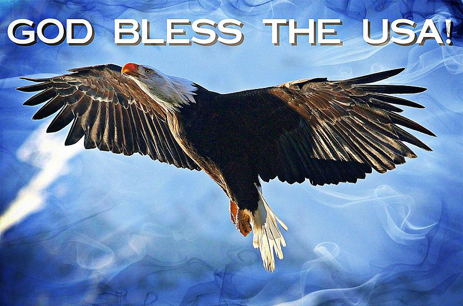 Bald Eagle Digital Art - God Bless The Usa by Carrie OBrien Sibley
