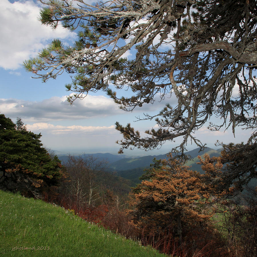 North Carolina Photograph - Gods Good Earth by Joseph G Holland